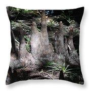 Cypress Knees Throw Pillow