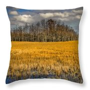 Cypress Marsh Throw Pillow