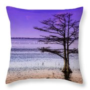 Cypress Purple Sky 2 Throw Pillow