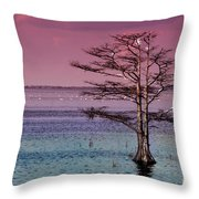 Cypress Purple Sky Throw Pillow