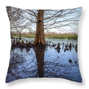 Cypress Reflections Throw Pillow