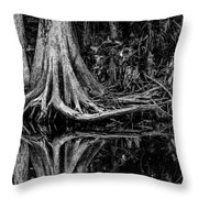 Cypress Roots - Bw Throw Pillow