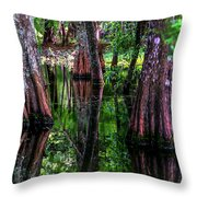 Cypress Secrets Throw Pillow