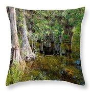 Cypress Trees 4021 Throw Pillow