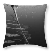Cypress Tree At Mingo National Wildlife Refuge Mo Img 3089 Throw Pillow