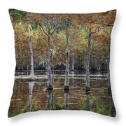 Cypress Tree Fall Reflections Throw Pillow