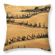 Cypress Tree Lined Road Throw Pillow