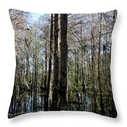 Cypress Trees Throw Pillow by April Wietrecki Green