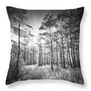 Cypress Trees In Big Cypress Throw Pillow