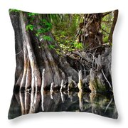 Cypress Trees - Nature's Relics Throw Pillow by Christine Till