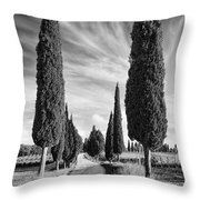 Cypress Trees - Tuscany Throw Pillow