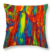 D Mas Gras Throw Pillow