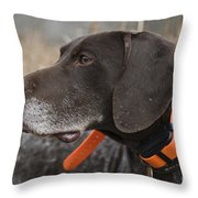 D009383 - Soulful Throw Pillow
