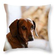 Dachshund Portrait Throw Pillow