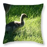 Dad's Lil Shadow Throw Pillow