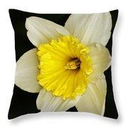 Daffodil 2014 Throw Pillow