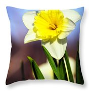 Daffodil Blossom Throw Pillow