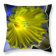 Daffodil Dreams - Photopower 1907 Throw Pillow