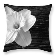 Daffodil Narcissus Flower Black And White Throw Pillow