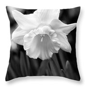 Daffodil Flower Black And White Throw Pillow