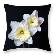Daffodil Flowers Still Life Throw Pillow