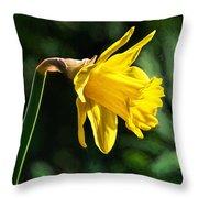 Daffodil - Impressions Throw Pillow