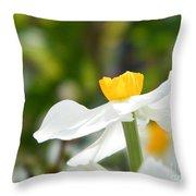 Daffodil In Profile Throw Pillow