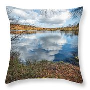 Daffodil Lake Throw Pillow by Adrian Evans