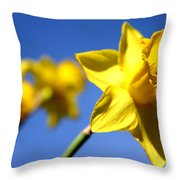 Daffodil Line Throw Pillow