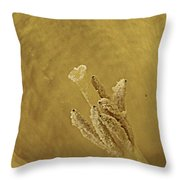 Daffodil Macro Throw Pillow