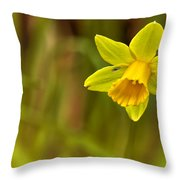 Daffodil - No. 1 Throw Pillow