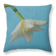Daffodil On Blue 1 Throw Pillow