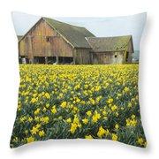 Daffodils And Barn Throw Pillow