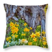 Daffodils And Sculpture Throw Pillow