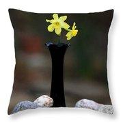 Daffodils In Black Amethyst 2 Throw Pillow