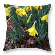 Daffodils In The Rain  Throw Pillow