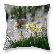 Daffodils On The Shore Throw Pillow