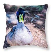 Daffy Duck Throw Pillow