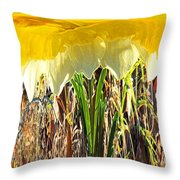 Daffy One Throw Pillow