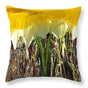 Daffy Three Throw Pillow