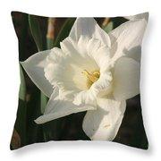 Dafodil192 Throw Pillow