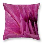 Dahalia In The Rain - 651 Throw Pillow