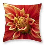 Dahlia - 2 Throw Pillow