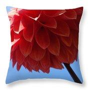 Dahlia #3 Throw Pillow