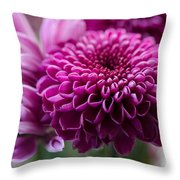 Dahlia And Mums Throw Pillow