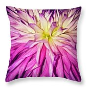 Dahlia Bursting With Color Throw Pillow