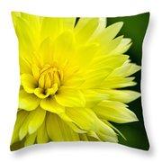 Dahlia Dream Throw Pillow