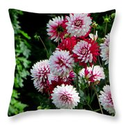 Dahlia Love Throw Pillow