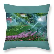 Dahlia Field Farm Scene Throw Pillow