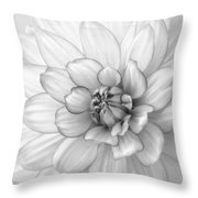 Dahlia Flower Black And White Throw Pillow